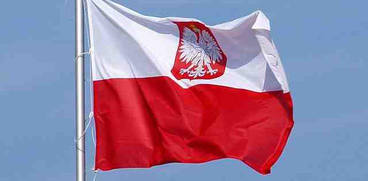Polska w finale mistrzostw świata w siatkówce - zdjęcie