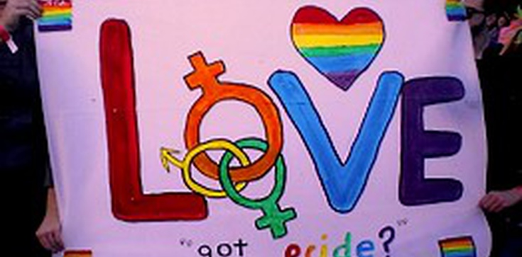 """Lista lokali przyjaznych gejom. """"Informacja przydatna dla kiboli"""" - zdjęcie"""