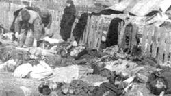 Ukraina nie pozwala Polsce przeprowadzać ekshumacji. Wstyd za Wołyń? - miniaturka