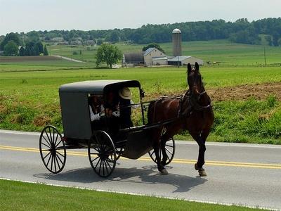 Nie wolno wyśmiewać się z Amiszów