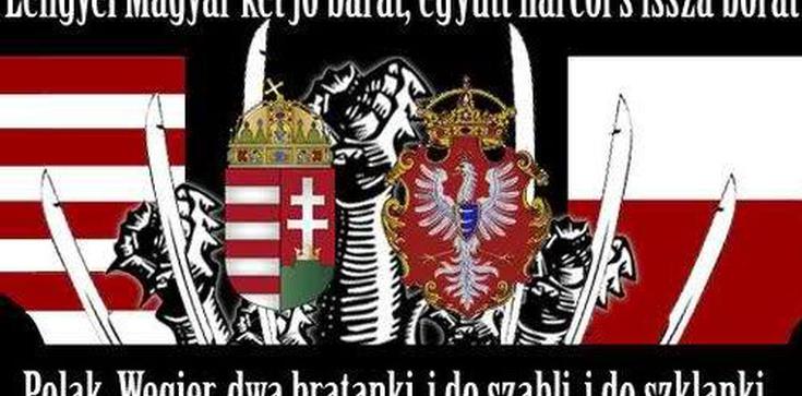 Dr Targalski dla Frondy: Polacy bronią własnej racji stanu, a Niemcy bronią własnej - zdjęcie