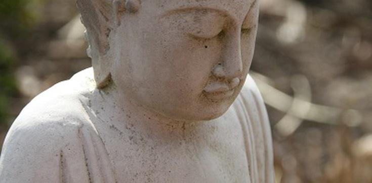 Duchowy koronawirus - buddyzm i inne wschodnie -izmy - zdjęcie