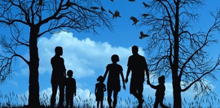 Polacy chcieliby mieć dzieci. Ale czy ich na to stać? Teresa Kapela dla Fronda.pl: Skomercjalizowaliśmy wychowanie dzieci - zdjęcie