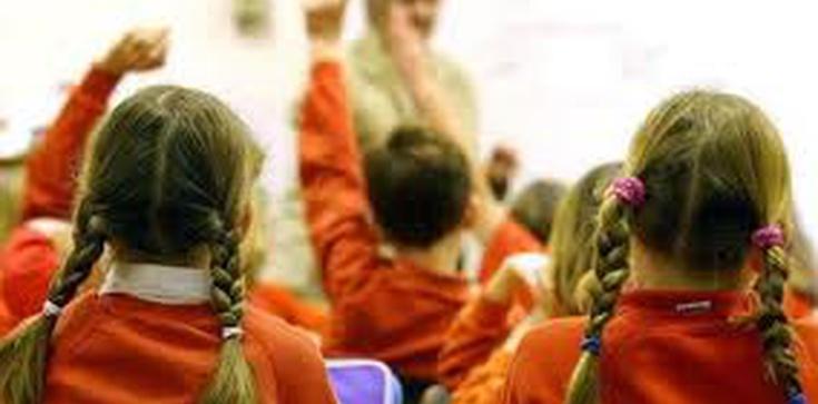 """Opinia na temat stanowiska Rzecznika Praw Obywatelskich ws. programu """"Równościowe przedszkole. Jak uczynić wychowanie przedszkolne wrażliwym na płeć"""" - zdjęcie"""