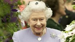 Już niedługo królowa Elżbieta włoży burkę - wieszczy islamista zamieszkujący Wielką Brytanię - miniaturka