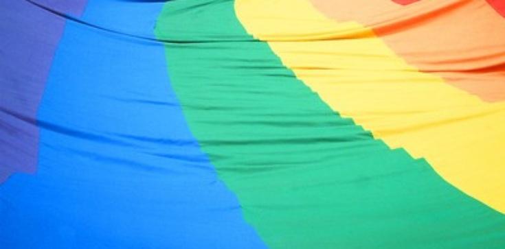 Tryumf wrogów homofaszyzmu w USA! - zdjęcie