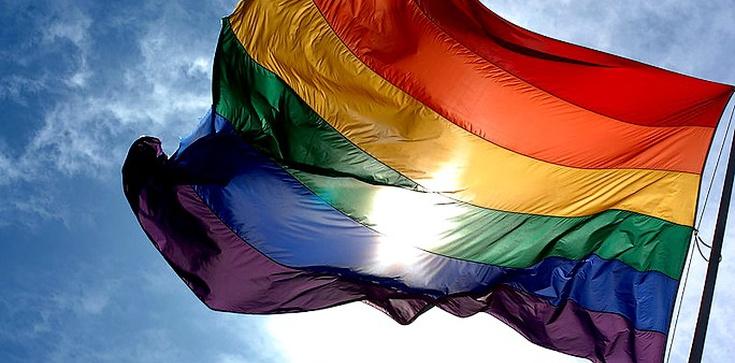 Do sądu za żarty o gejach - zdjęcie