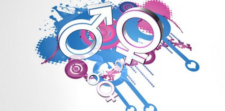 """Nauczyciele we Włoszech będą szkoleni w """"równości płciowej"""" - zdjęcie"""