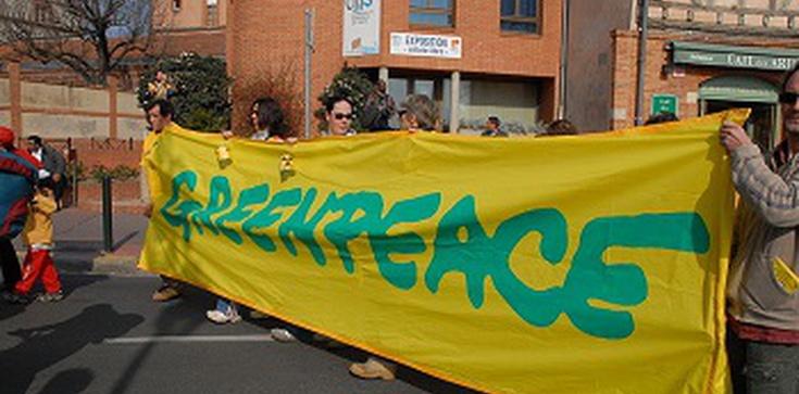 Indie odcinają Greenpeace od pieniędzy - zdjęcie