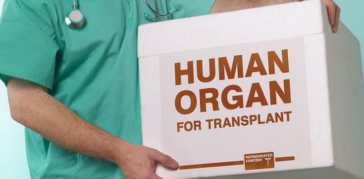 Transplantologia zabija! - zdjęcie