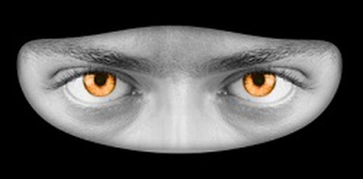 PiS przeciwne zakazowi zasłaniania twarzy - zdjęcie
