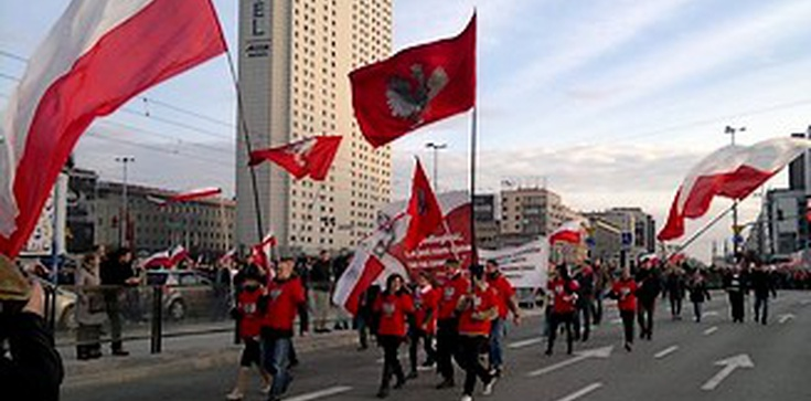 Policja vs. Marsz Niepodległości. Trzy zarzuty dla organizatora - zdjęcie