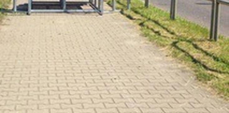 Pomorska poseł PO i ołtarz na drodze rowerowej. Twitter rozgrzany - zdjęcie