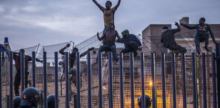 Bunt imigrantów! Zaatakowali i poranili policjantów - zdjęcie