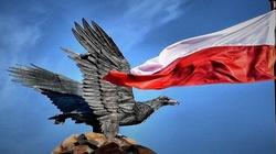 Stratfor: Polskę czeka ogromny ROZKWIT, Rosja upadnie - miniaturka