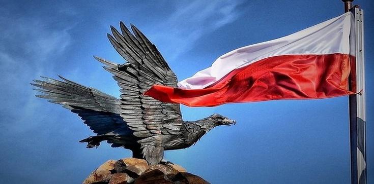 """Poseł PiS: Nie uda się Platformie wiecznie trzymać Narodu na """"krótkim powrozie""""  - zdjęcie"""