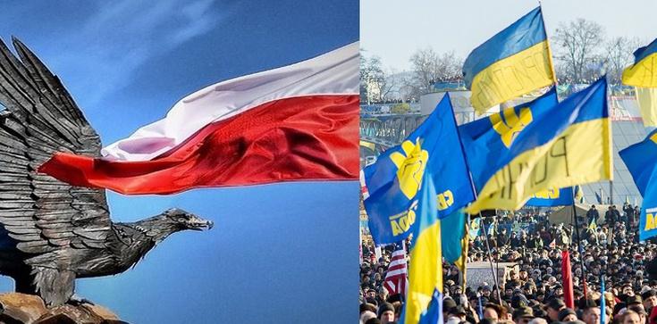 Jarosław Sellin dla Fronda.pl: Ukraina musi być niepodległa. Taki jest polski interes narodowy - zdjęcie