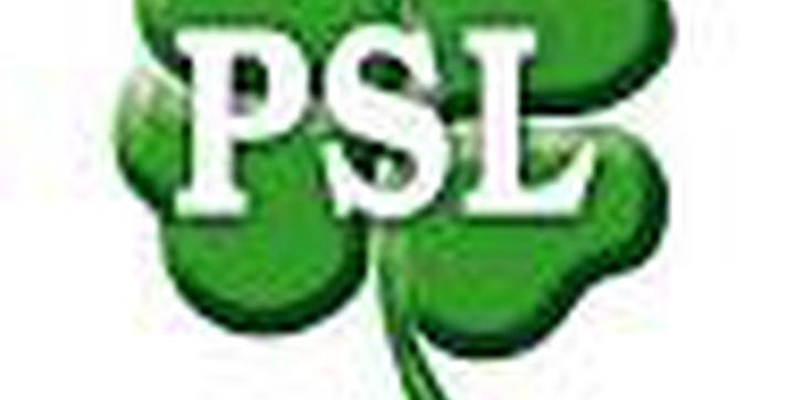 """""""Fakt"""": PSL to najbardziej prorodzinna partia - zdjęcie"""