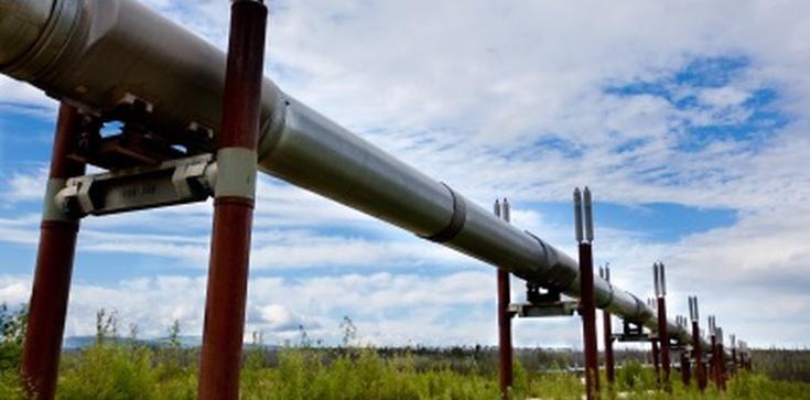 Niemcy i Rosja zablokują budowę gazoportu w Świnoujściu? - zdjęcie