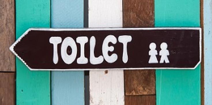 Absurdy postępu. Szwedzi będą korzystać z toalety wyłącznie na siedząco?! - zdjęcie