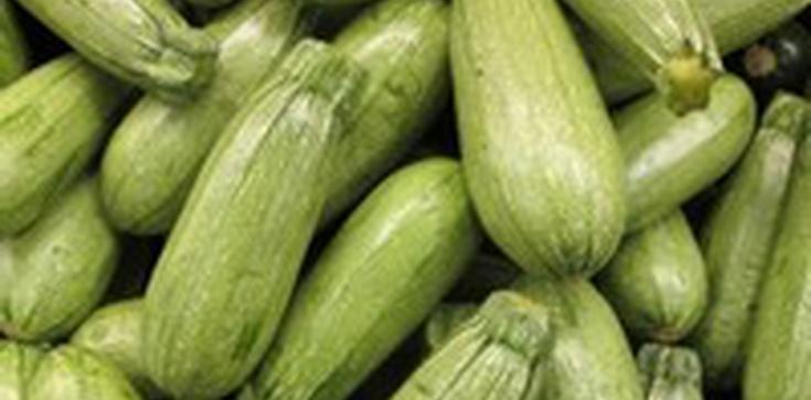Veggie-Day w czwartek zamiast postu w piątek – tradycja wg Zielonych - zdjęcie