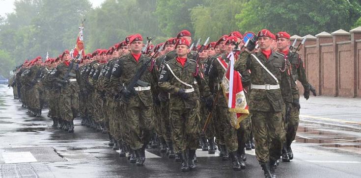 Polska to gwarant bezpieczeństwa Litwy - zdjęcie