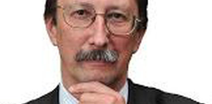 Prof. Jan Żaryn dla Fronda.pl: W polskiej tradycji obozu narodowego istniała wyraźna niechęć do politycznych aspiracji ukraińskich - zdjęcie