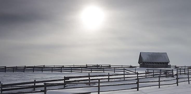 UWAGA! Za 15 lat nastąpi mini-epoka lodowa! - zdjęcie