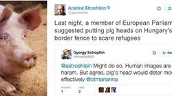 Węgierski poseł: Powbijajmy świńskie głowy na płoty graniczne! - miniaturka