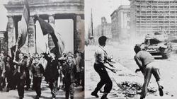 Kto zakłamuje Polaków? Niewygodna rewolucja 1953 roku! - miniaturka