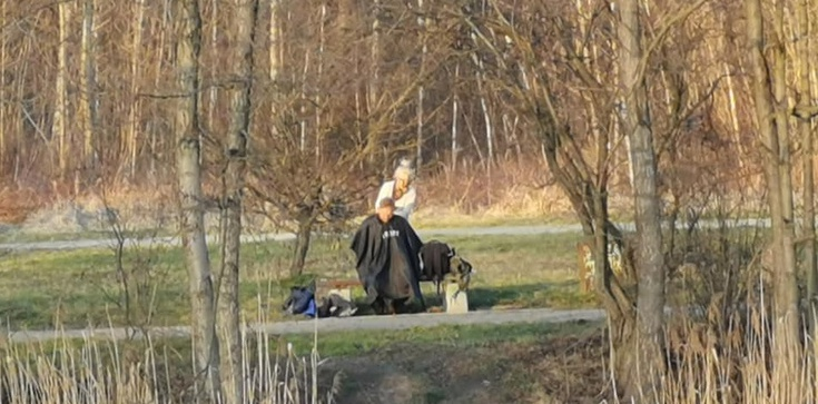 Polska kreatywność i strzyżenie w parku. To zdjęcie robi furorę - zdjęcie