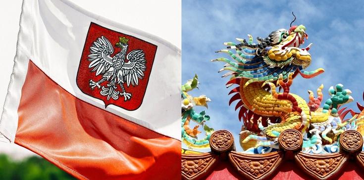 Ks. Rogowski: Dziwna wizja. ,,Ocaleje tylko Polski i Chiński naród'' - zdjęcie