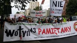 Smutne. 50 osób na Marszu Wołyńskim w Warszawie [RELACJA] - miniaturka