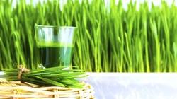 Sok z trawy pszenicznej - genialny lek na wiele dolegliwości - miniaturka