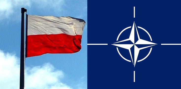 Kto się liczy w NATO? Londyn, Paryż - i Warszawa - zdjęcie