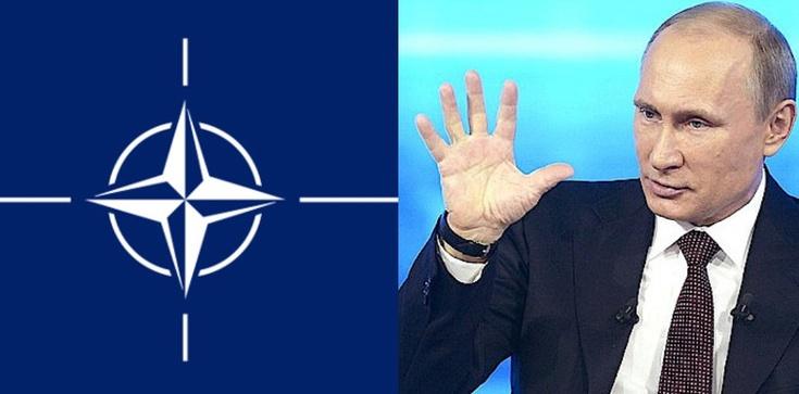 Internetowe trolle Kremla na wojnie z NATO - zdjęcie