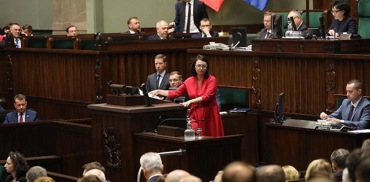 Opozycja 'na Maderze'? Komentarze po porażce PO w głosowaniu - zdjęcie
