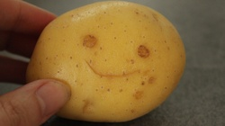 Zwykły ziemniak... 'masowym mordercą' - TEGO unikaj - miniaturka