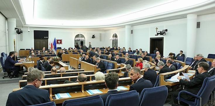 Wzrost akcyzy na alkohol i papierosy. Senat: Projekt wraca do Sejmu - zdjęcie