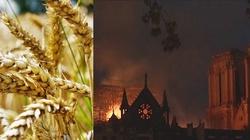 J. Maritain: Kościół bezradny przywołuje Bożą moc - miniaturka