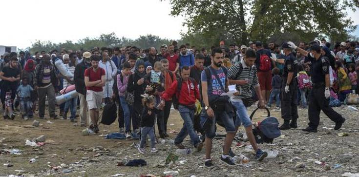 Piłka: Ośrodki dla imigrantów niech PO buduje w swoich regionach - zdjęcie