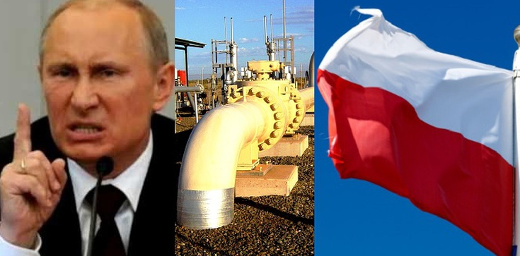 Nieskuteczny jak Putin? USA dostarczą nam gaz na 5 lat... i Patrioty - zdjęcie