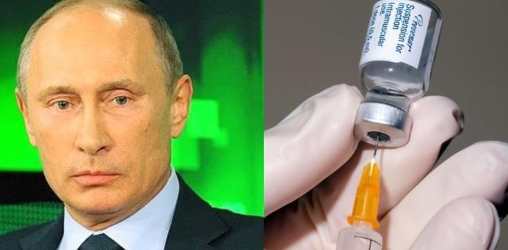 Antyszczepionkowcy - szaleńcy czy trolle Kremla? - zdjęcie