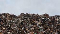 Czy Warszawa skończy jak Neapol? Jest problem ze śmieciami - miniaturka