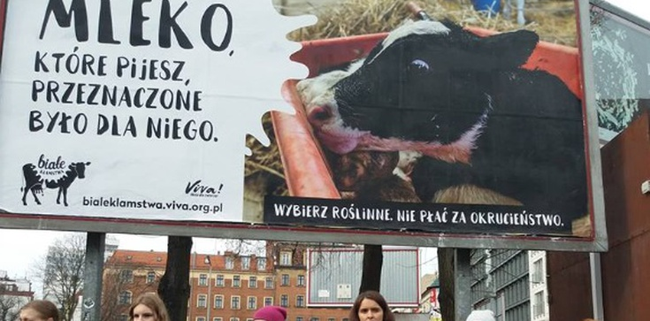'Nie twoja mama, nie twoje mleko!' Kuriozalna akcja w Poznaniu - zdjęcie