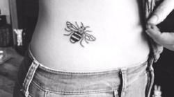 Antyterrorystyczna pszczoła, czyli jak upada Zachód - miniaturka