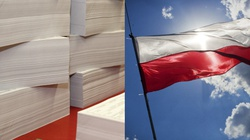 Brawo Polska. Polski sektor papierniczy ma się świetnie pomimo pandemii - miniaturka