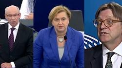 Anna Fotyga ostro odpowiada Lewandowskiemu i Verhofstadtowi: Nie życzę sobie obrażania ze strony osób, które powinny milczeć - miniaturka