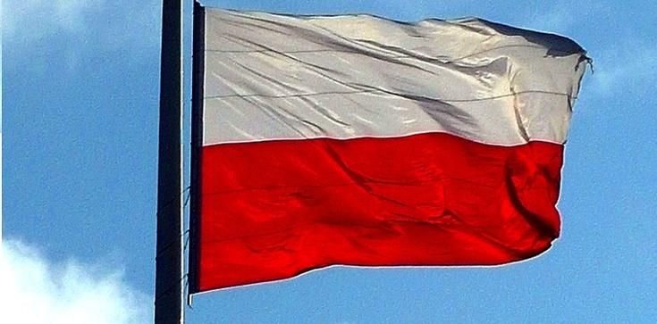 Tomasz Teluk: Gospodarka Polski najlepsza od lat! Brawa!!! - zdjęcie