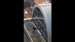 Europoseł PiS utknął na balkonie. Skandaliczne zachowanie polityka PO - miniaturka